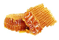 Keeping Bees For Honey - Honey For Sale - Starter Bees For Beginners